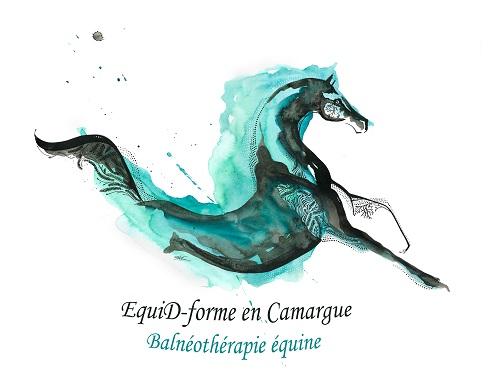 logo Splash Balnéothérapie équine