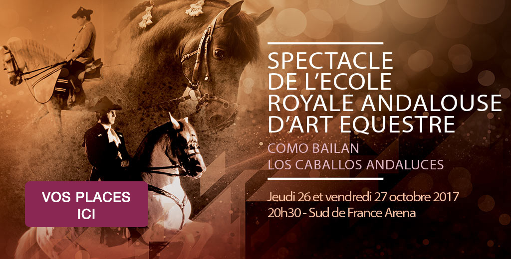 spectacle-equestre-jumping